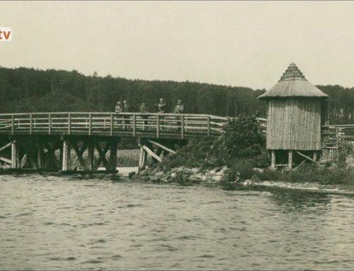 Historien om skovområde på nordsiden af Flensborg Fjord