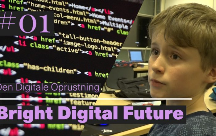 Den Digitale Oprustning
