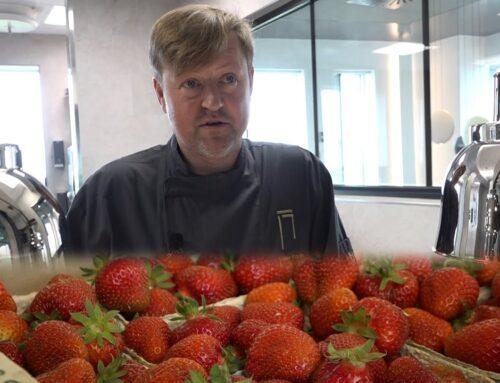 Gensyn med… Alsiske jordbær